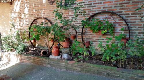 Rinconcito en el Jardín